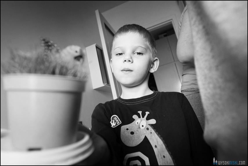 fotografia rodzinna, dzieci, wielkanocne przygotowania i pisanki (1)