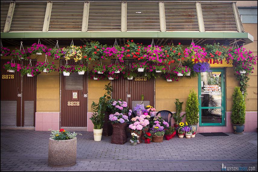 kwiaciarnia na warszawskiej woli