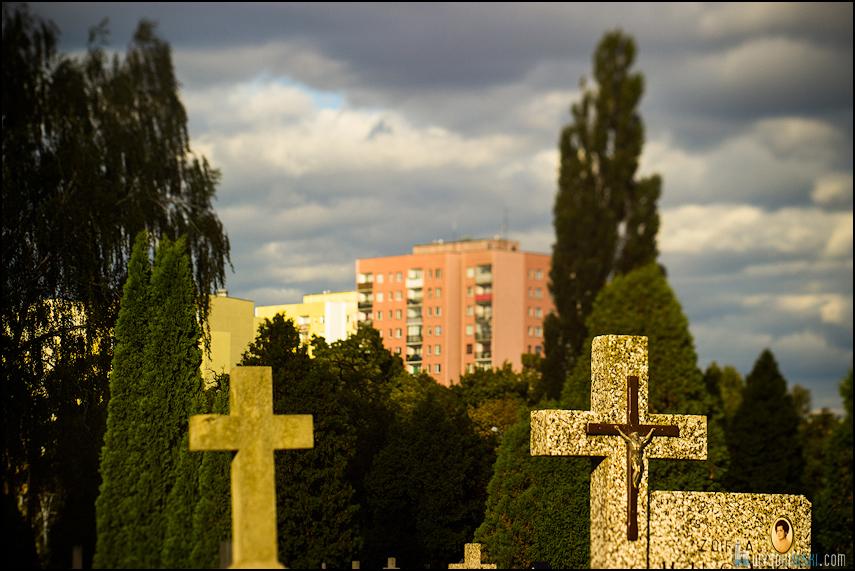 Chomiczówka- blokowe osiedle w Warszawie, zdjęcia test adaptera tilt-shift (18)
