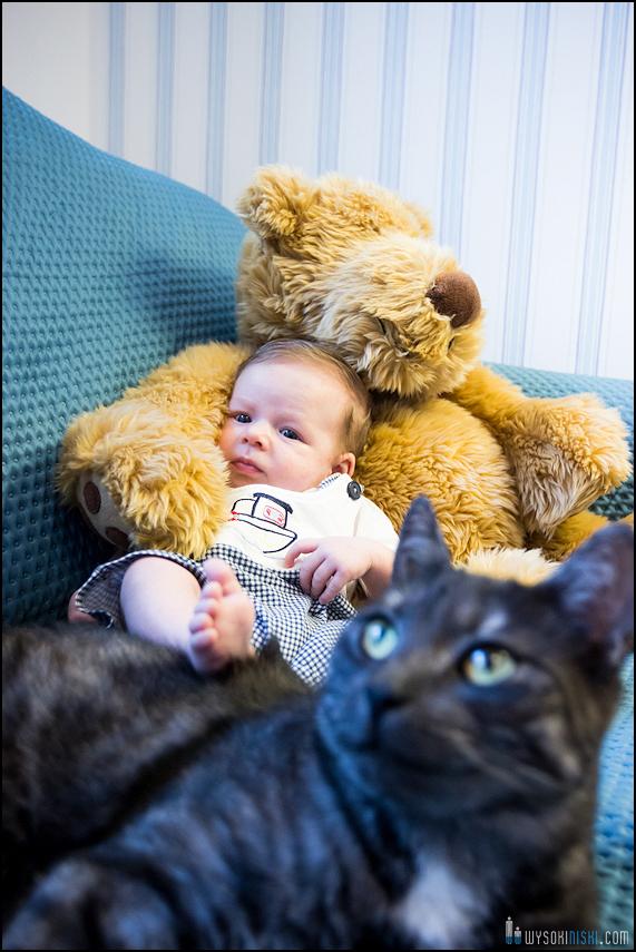 dziecko, miś i kot