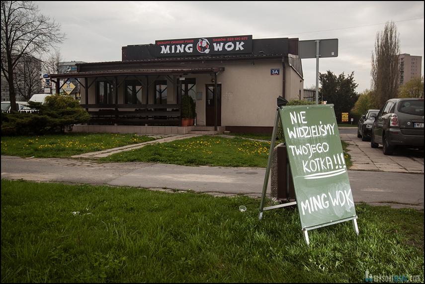 nie widzieliśmy twojego kotka ming wok