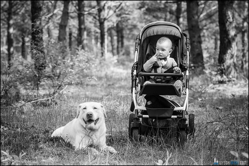 dziecko pies labrador Rawa Mazowiecka fotograf
