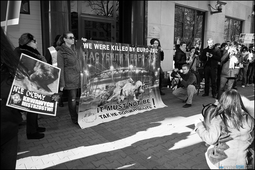pikieta protest- przeciw zabijaniu psów na Ukrainie w ramach przygotowań do Euro 2012 (80)