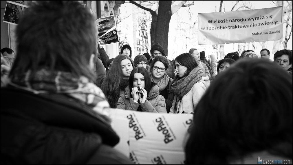 pikieta protest- przeciw zabijaniu psów na Ukrainie w ramach przygotowań do Euro 2012 (44)