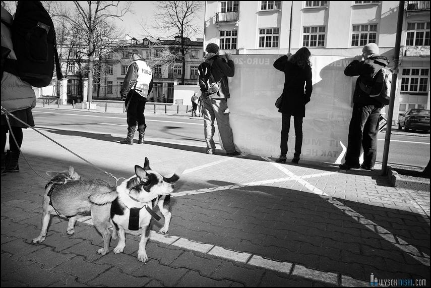 pikieta protest- przeciw zabijaniu psów na Ukrainie w ramach przygotowań do Euro 2012 (40)