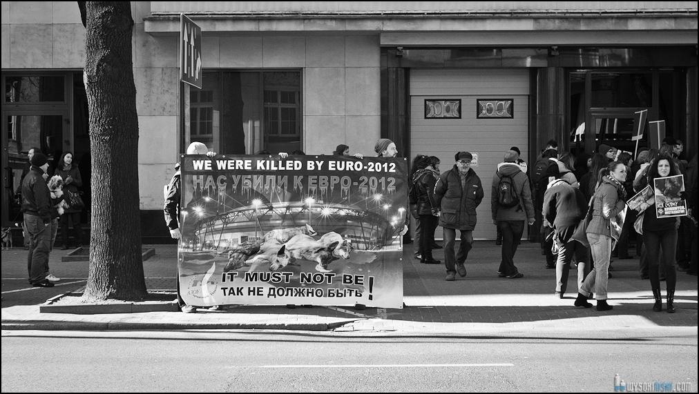 pikieta protest- przeciw zabijaniu psów na Ukrainie w ramach przygotowań do Euro 2012 (38)