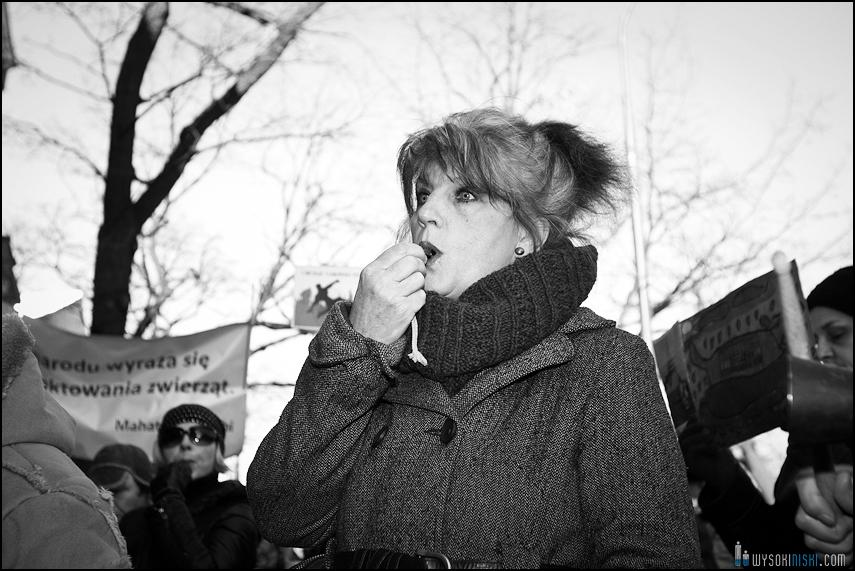 pikieta protest- przeciw zabijaniu psów na Ukrainie w ramach przygotowań do Euro 2012 (31)