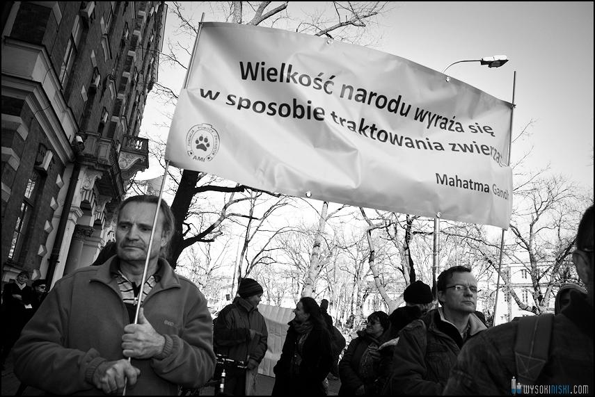 pikieta protest- przeciw zabijaniu psów na Ukrainie w ramach przygotowań do Euro 2012 (20)