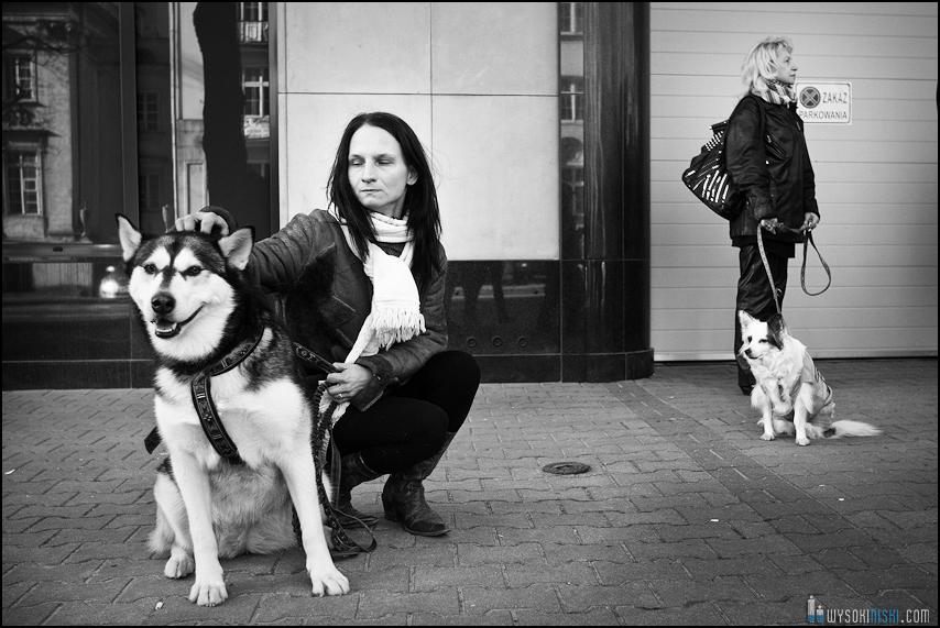 pikieta protest- przeciw zabijaniu psów na Ukrainie w ramach przygotowań do Euro 2012 (2)