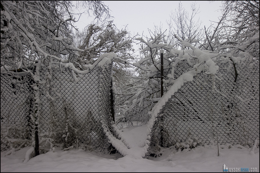 Śnieg na wiosnę, Wielkanoc 2013, Warszawa, Chomiczowka Wawrzyszew las (10)