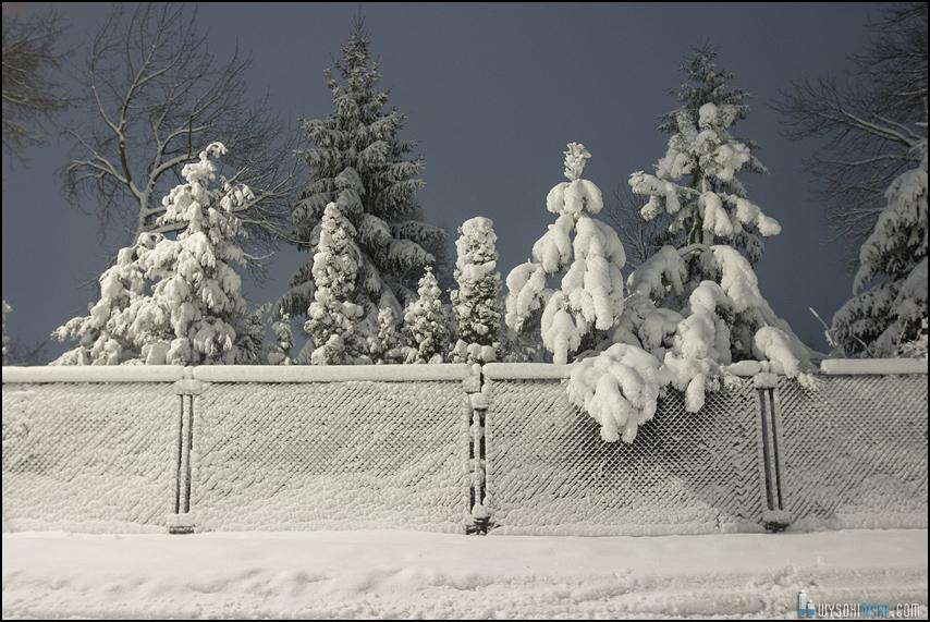 Śnieg na wiosnę, Wielkanoc 2013, Warszawa, Chomiczowka Wawrzyszew las (24)